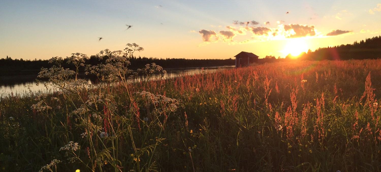 Aufmacher-Lappland
