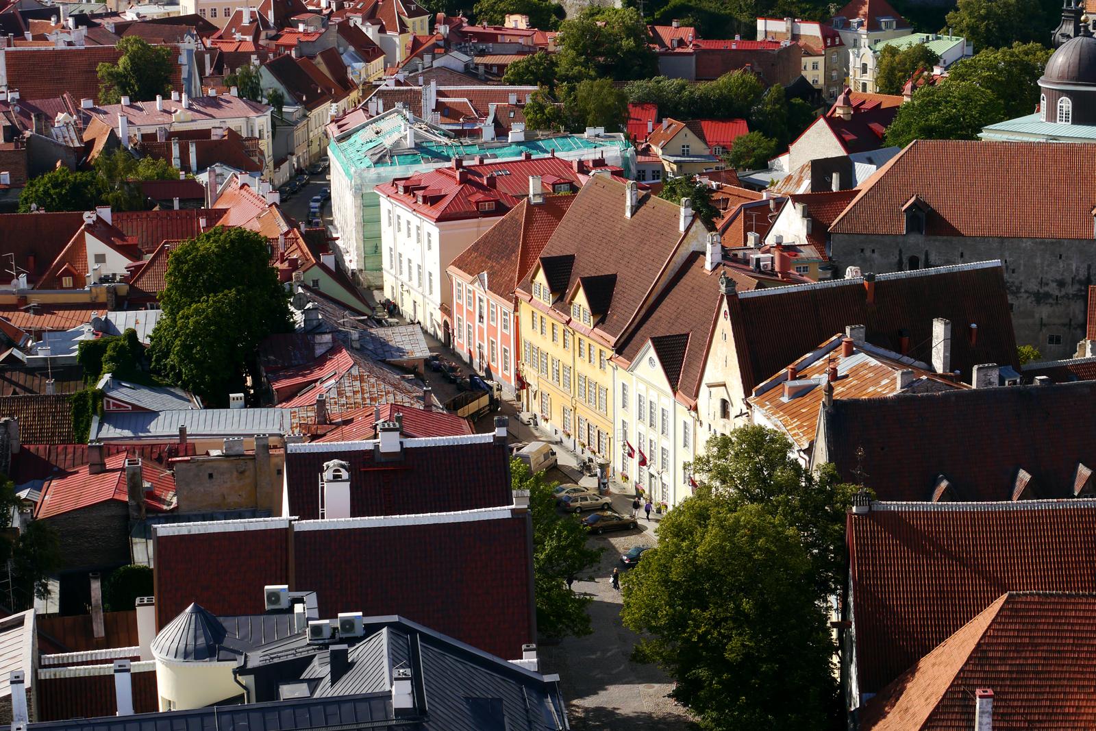 Ausblick über die Dächer von Tallinn.