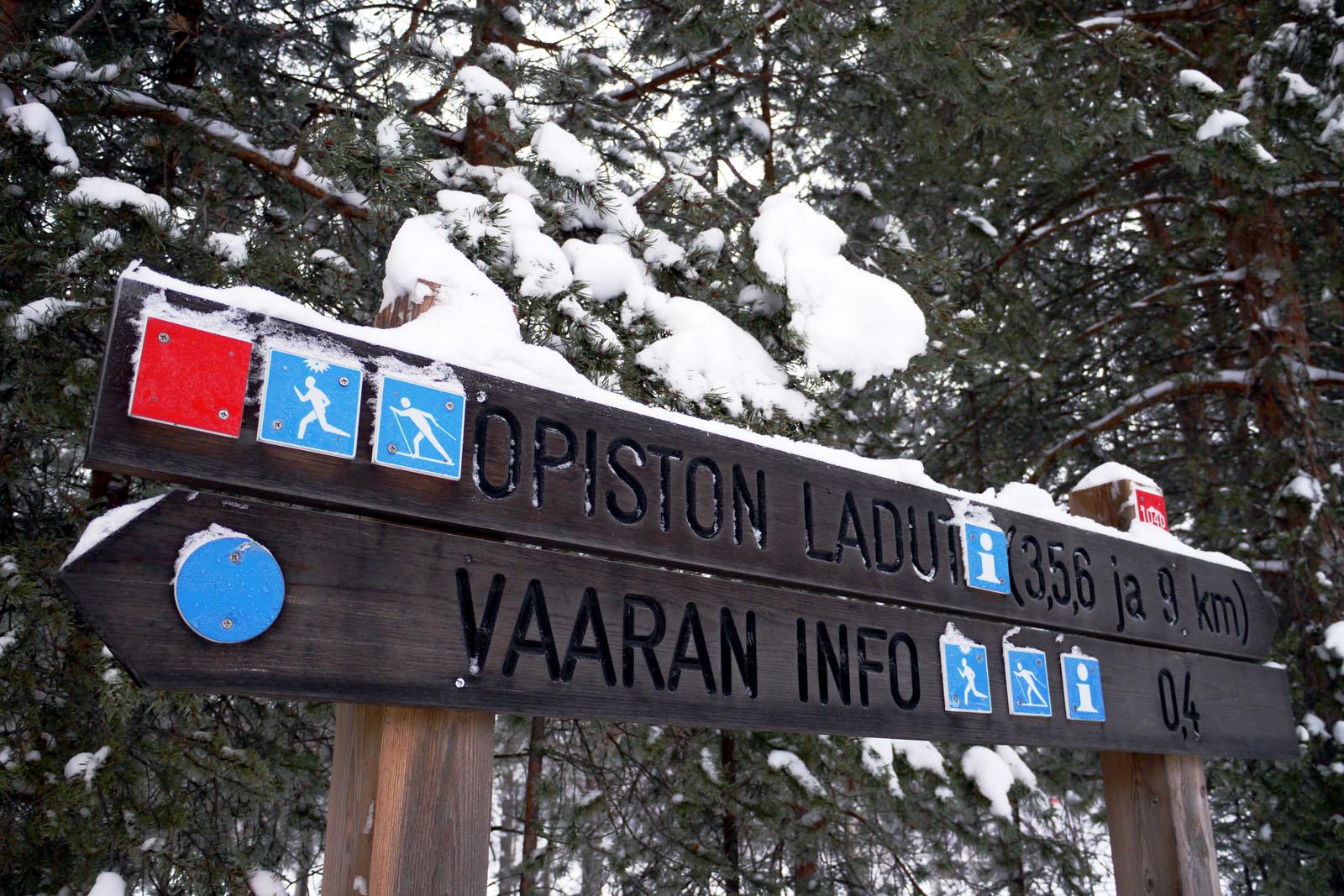 Langlauf-Piste-Loipen-Vuokatti-Finnland