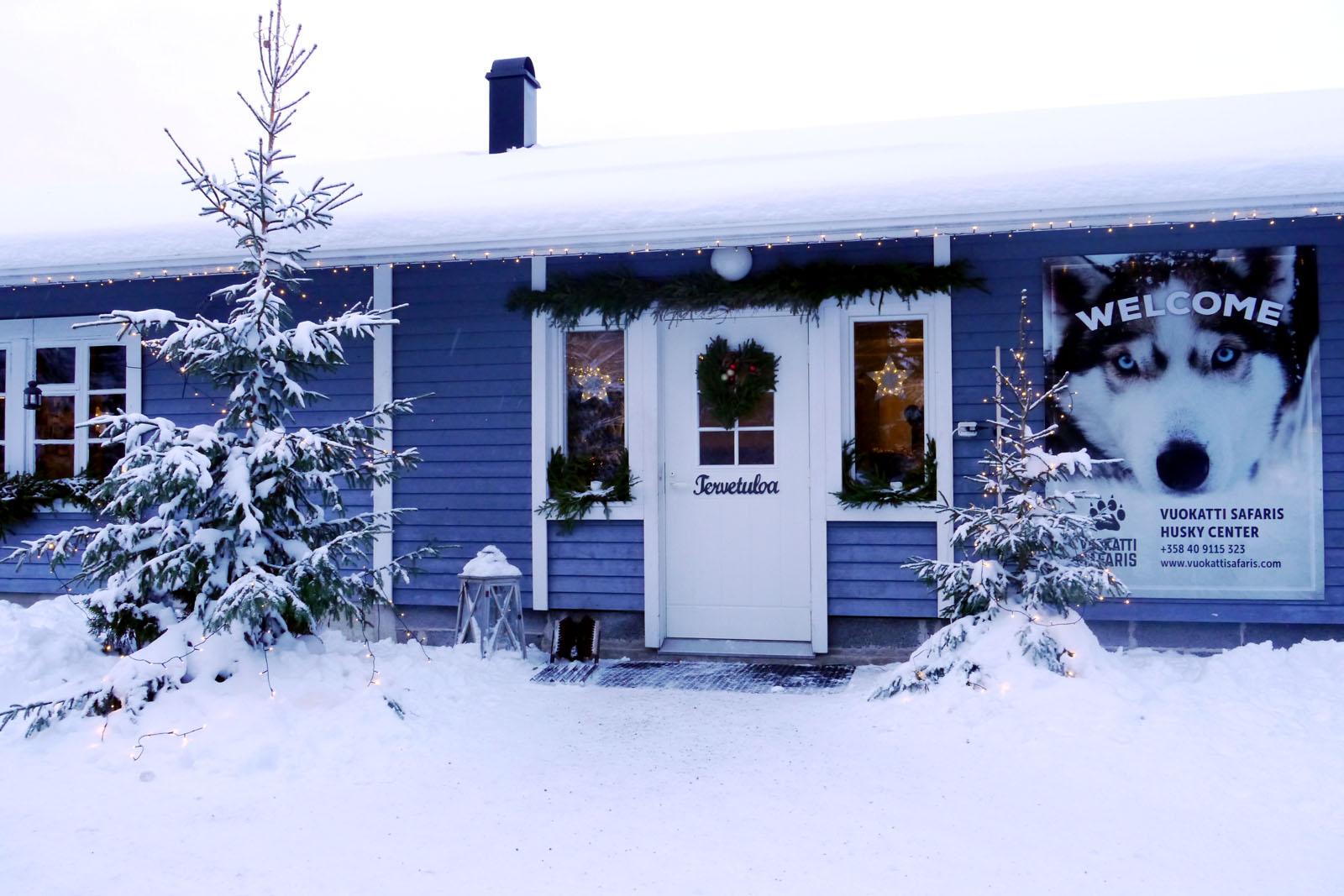 Schlittenhund Tour-Vuokatti-Finnland-Winter-5
