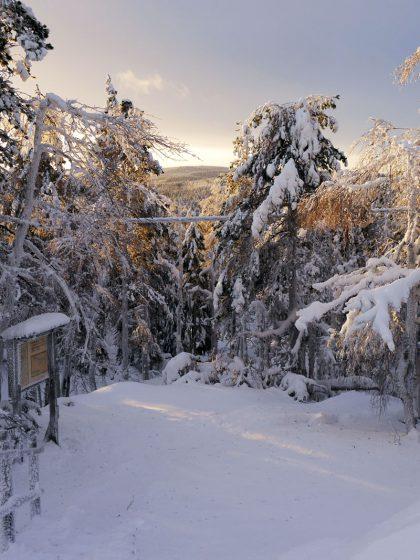 Vuokatti-Finnland-Winter-Schnee-sonnig