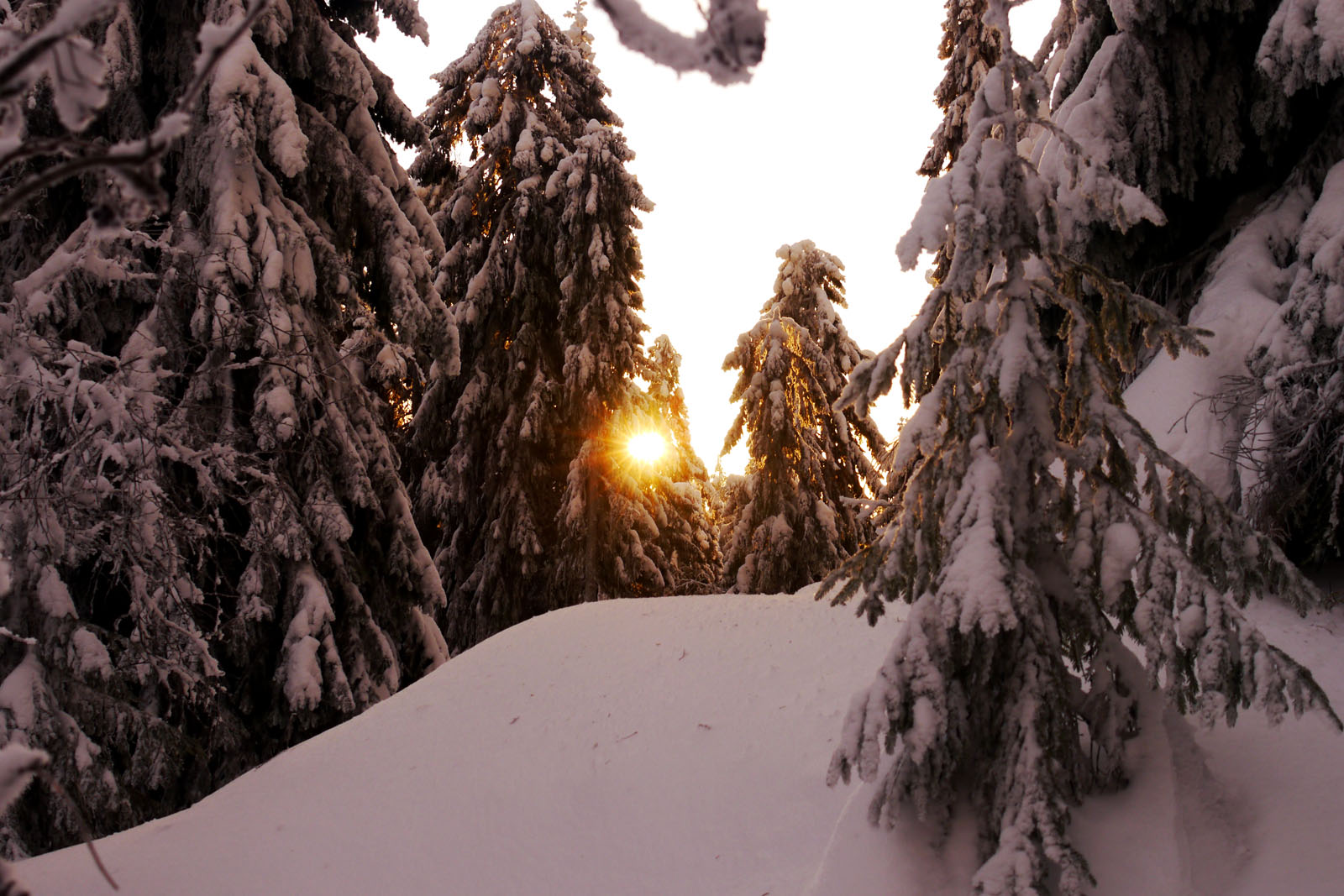 vuokatt-finnland-winter-sonnenaufgang