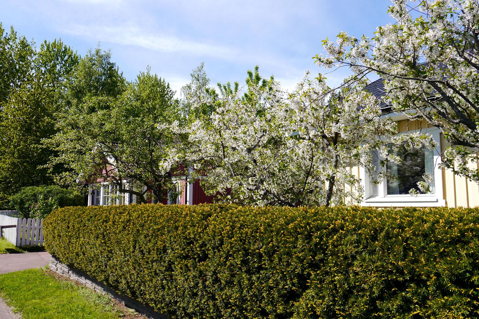 Mariehamn-Aland Inseln-Frühling