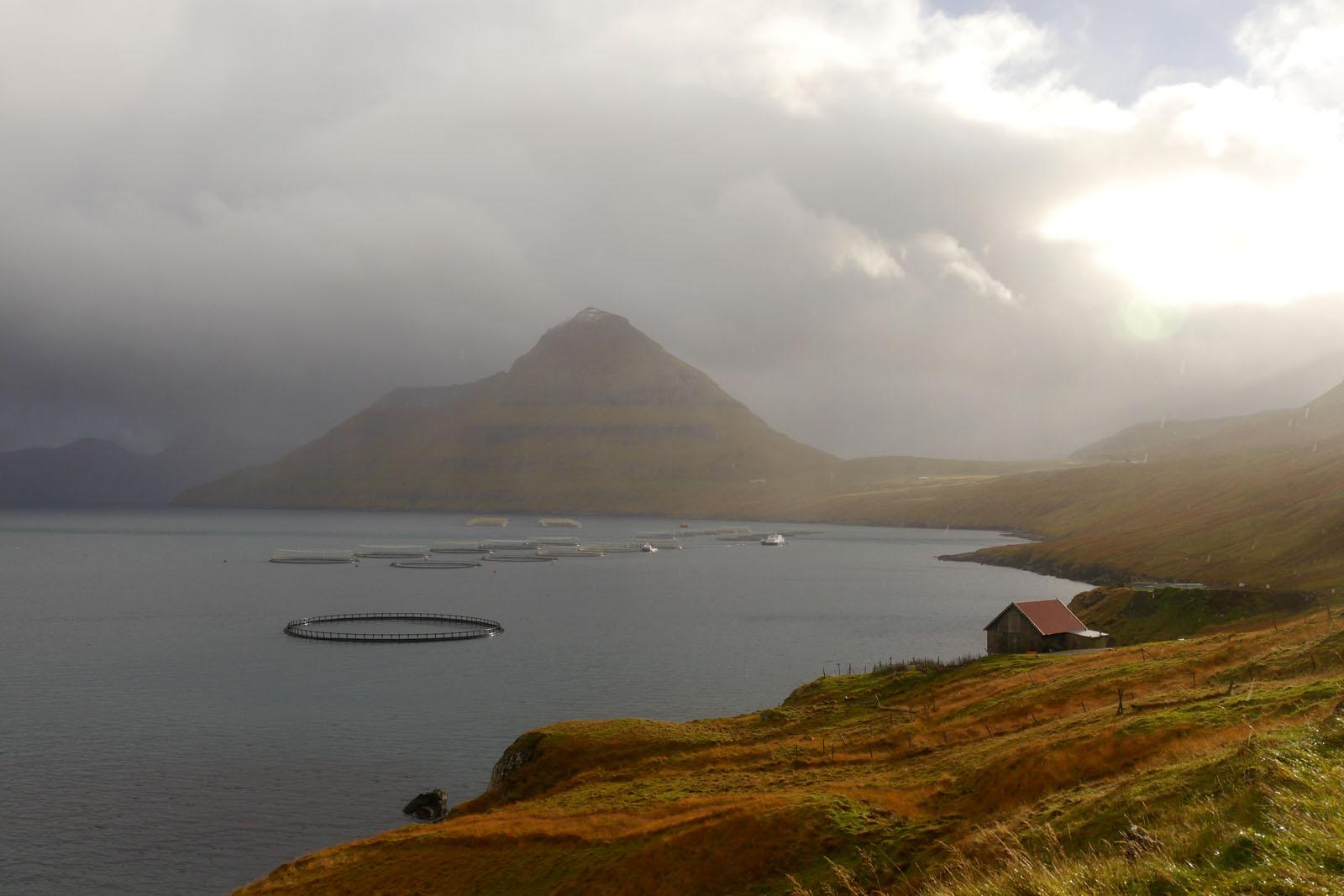 Eysturoy-Faroer Inseln-Fuglafjordur-berge-regen-fjord-3