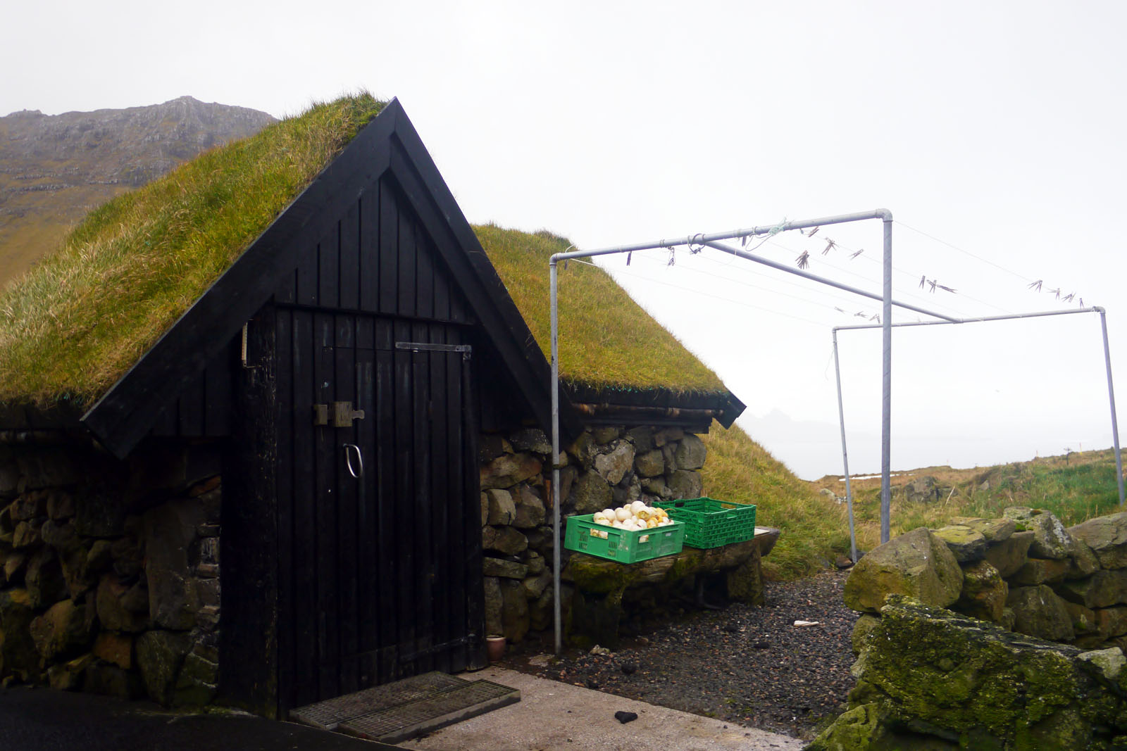 Faroer Inseln-Haus-Grasdach